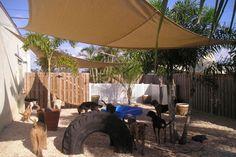 Cheap Solution For A Muddy Backyard Home Garden