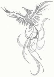 phoenix rising from the ashes tattoo - Google Search