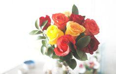 https://flic.kr/p/y8jXAE | Roses