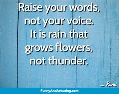 So True-Raise your words, not your voice. It is rain that  grows flowers, not thunder.  _ Rumi