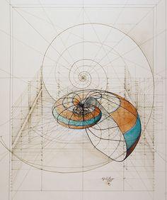 Beynin Sınırlarını Aşmanın Geometrik Hali Altın Oran'a Uyularak Yapılmış 16 Çizim
