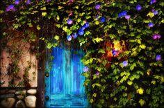 neon blue #doors
