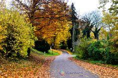 Conhecendo a Alemanha : Potsdam e o Parque Sanssouci