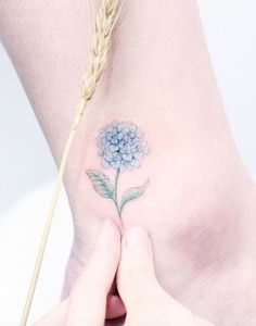 awesome Women Tattoo - Hydrangea tattoo by Mini Lau... Check more at http://tattooviral.com/women-tattoos/women-tattoo-hydrangea-tattoo-by-mini-lau/