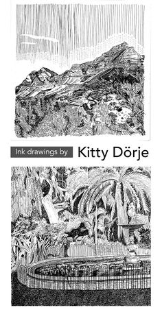 Ink drawings of Cape Town by artist Kitty Dörje Fine Arts Major, Fine Arts Degree, University Of Cape Town, South African Artists, Ink Drawings, Winter Solstice, Kitty, Little Kitty, Kitty Cats