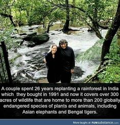 Wtf Fun Facts, Funny Facts, Random Facts, Endangered Species Of Plants, Human Kindness, Asian Elephant, Faith In Humanity Restored, Unbelievable Facts, Replant