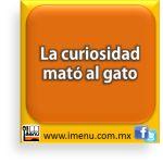 #Dichos y #Refranes La curiosidad mató al gato