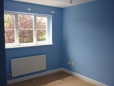 Dulux natural hints matt emulsion paint cornflower white 2 for Dulux childrens bedroom ideas