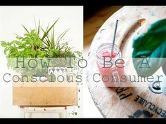 How To Be A Conscious Consumer // The Zero Waste Lifestyle - YouTube