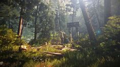 green forest The Witcher 2 Assassins of Kings #forest #nature The Witcher video games #1080P #wallpaper #hdwallpaper #desktop The Witcher Game, The Witcher Wild Hunt, The Witcher Geralt, Destiny Video Game, Video Game Art, Video Games, Assassin's Creed Edward Kenway, Wolf Emblem, Forest Mountain
