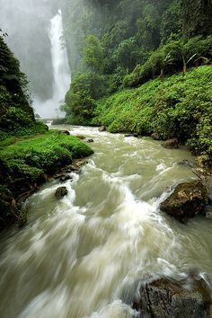 One of the Dongon 7 Waterfalls Lake Sebu South Cotabato Story here Large View Philippines Culture, Philippines Travel, Travel Aesthetic, Waterfalls, The Good Place, Cool Photos, Scenery, To Go, River