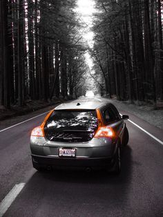 Volvo C30 driving through the California redwoods.