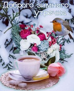 Good Morning Flowers Gif, Good Morning Post, Morning Gif, Morning Quotes, Winter Pictures, Christmas Pictures, Free To Use Images, Day Wishes, Tea