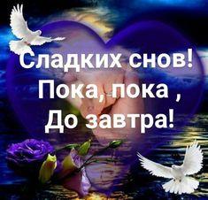 ✿Окрытки✿ и поздравления✿ Good Night, Animals And Pets, Positivity, Humor, Quotes, Cards, Image, English, Nighty Night