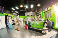 What you see when you walk in the store (except for the bulldog sprawling out in the middle of the floor -- usually) ;) #greenspotomaha #bulldoglove #NaturalPetFoodandSupplies