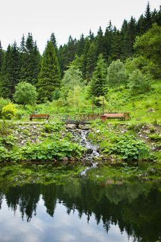 perfect surroundings - water, forest, mountains  www.jeleniastruga.pl