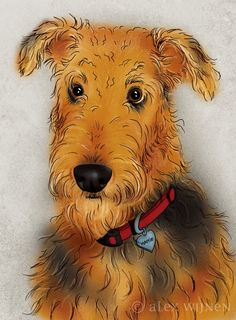 8x10 illustration print: Miss Hattie, an Airedale Terrier (includes mat). $25.00, via Etsy.