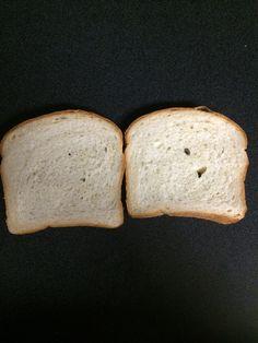 Sandwich Bread Made From Scratch