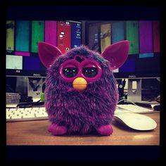 furby. I want one(: