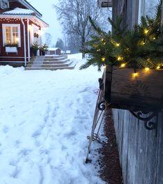 Ljusslingor lyser upp i mörkret Anna, Outdoor, Instagram, Holidays, Outdoors, Holidays Events, Holiday, Outdoor Games, The Great Outdoors
