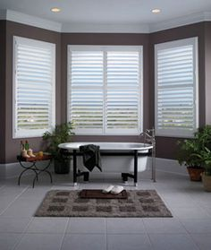 Timber Blinds shutters shown in Clear Vue option which eliminates the center vertical operating bar.