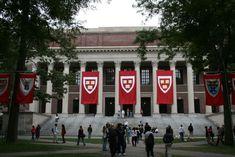 Harvard Sexual Assault Survivor Writes Heartbreaking Open Letter to the School - PolicyMic