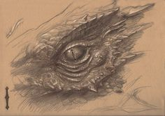 Ideas For Eye Sketch Dragon Realistic Dragon Drawing, Dragon Eye Drawing, Dragon Sketch, Dragon Art, Realistic Drawings, Eye Sketch, Drawing Sketches, Eye Drawings, Drawing Eyes