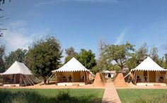 Sherbagh- Ranthambore. Literally a 'Tiger Park', which offers an authentic jungle camp experience tipping the best of wild with the best of hospitality and harmony with its surroundings.