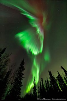 """What a great (and green) way to begin St. Patrick's Day!"" says photographer Dennis Mammana of Fairbanks, AK.     This brilliant green aurora was the result of a coronal mass ejection from the Sun, a blast of particles that hit the Earth in the early morning hours of March 17, 2013."