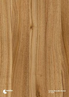 KT_ANAK - collins marcello walnut