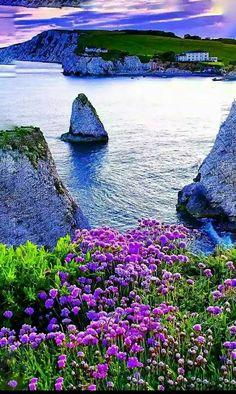 Paradise for dream - Nati Ventura - Google+ - #USTrailer