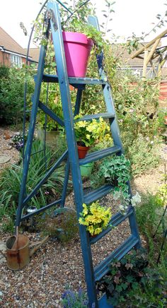 Old Wooden Ladder transformed with Annie Sloan Greek Blue, heavily distressed, then clear and dark wax applied liberally. Perfect shelving, indoors or out!