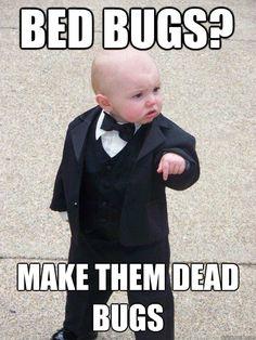 Turn bed bugs into DEAD BUGS! :) Cute little kid