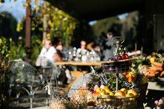 Farm Nursery, Home Meals, Fruit Trees, Lamb, Succulents, Table Decorations, Succulent Plants, Baby Lamb, Dinner Table Decorations