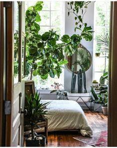 I receive a lot of mails from people who love the inspiration on My Scandinavian Home ( thank you ! Baltimore Apartment, Decoration Entree, Decoration Plante, Scandinavian Home, My New Room, Plant Decor, Green Life, Planting Flowers, Living Spaces