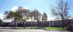 1981 harry ells high school...richmond california