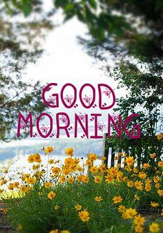 Good morning Good Morning Rainy Day, Good Morning Sunday Images, Good Morning Images Flowers, Hindi Good Morning Quotes, Morning Memes, Morning Greetings Quotes, Good Morning Sunshine, Good Morning Picture, Good Morning Friends
