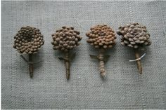 pine cone boutonnieres