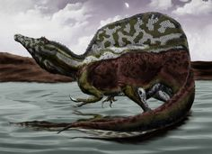 Spinosaurus Aegyptiacus by Durbed.deviantart.com on @DeviantArt