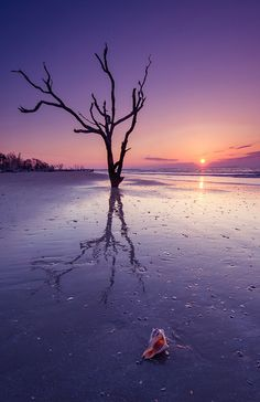 Sunrise, Botany Bay, South Carolina, USA, by vtgohokies, on Flickr.