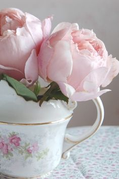 roses in a tea cup