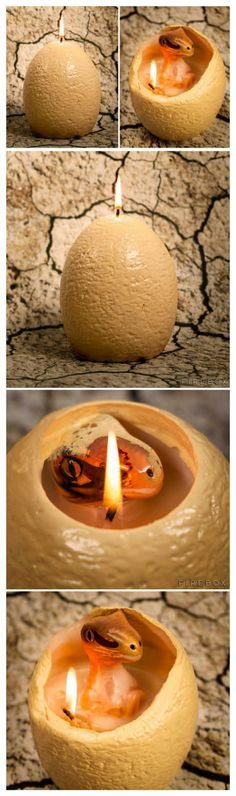 "Dinosaur egg candle that ""hatches"" a baby Raptor when it melts!"