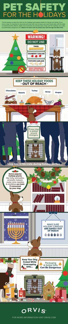 Tips To Keep Your Dog Safe This Holiday Season   Christmas Tips   New Years Tips   Dog Health Tips  