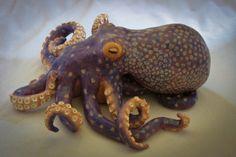 Octopus sculpture - stoneware, oil, acrylic, satin varnish, magic  by C. Norris 2012