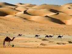 ✯ Dubai Desert