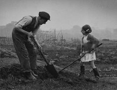 1942- A man and a young girl at work on an allotment on Hampstead Heath during the Second World War.
