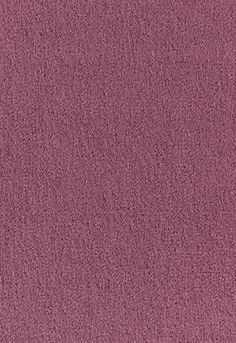 Fabric | San Carlo Mohair Velvet in Thistle | Schumacher