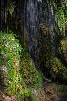 #Arizona #waterfall by Amy Sorvillo