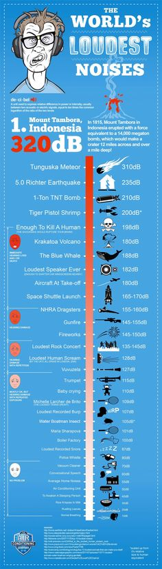 Amazing Decibel Infographic
