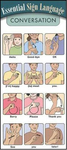 "Essential ASL Sign Language - for SASL (South African SL) please ignore the signs for ""good-bye"", ""thank you"" and ""later"", the other signs are the same. Also the ASL sign for ""please"" is the SASL sign for ""pleasure"" Sign Language Alphabet, American Sign Language, Sign Language Basics, Learn Sign Language Free, Sign Language Songs, English Sign Language, Australian Sign Language, Simple Sign Language, Spanish Language"